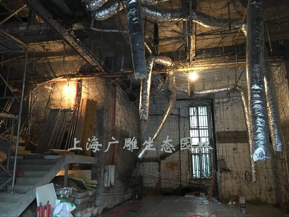 杭州钟乳石溶洞工地.jpg
