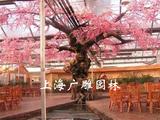上海仿真树